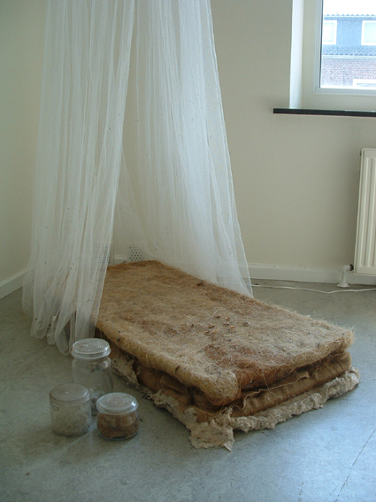 Stripped children's mattress, hairs, dust and seeds.
